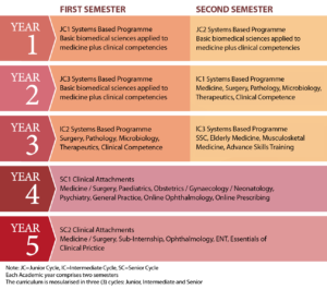 Structure of the Medical Degree Programme